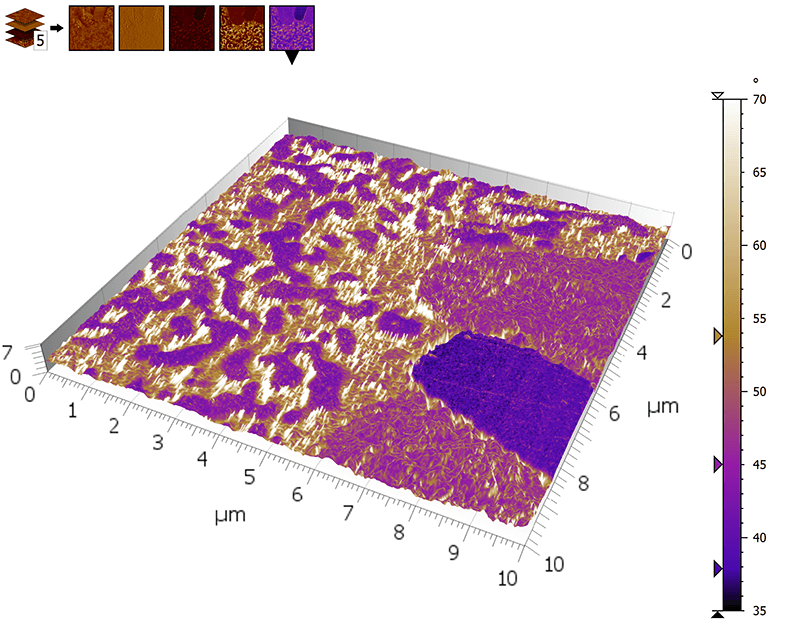 3D view of AFM multi-channel image