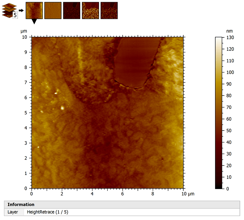 Multi-channel AFM data with phase and topography